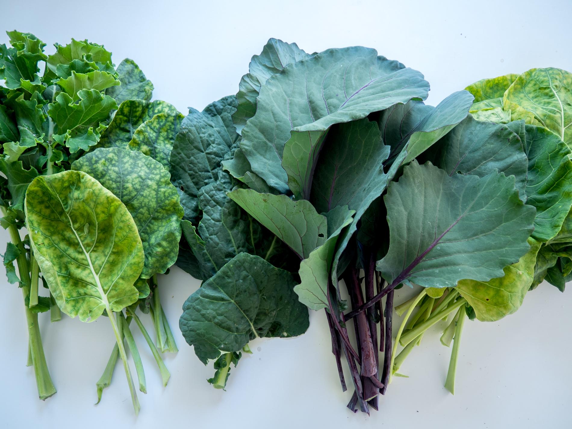terveelline salaatti