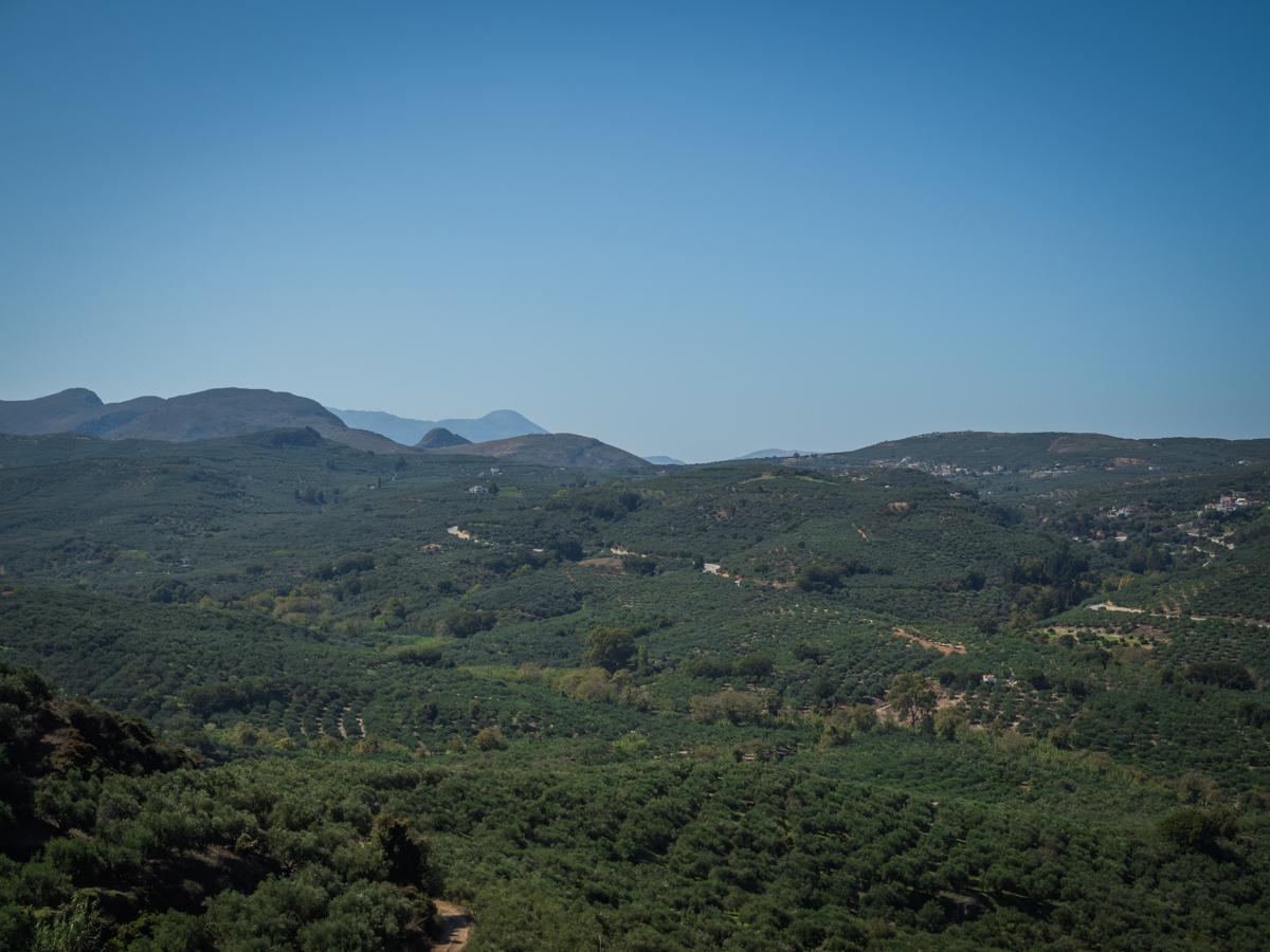 dop oliiviöljy alue
